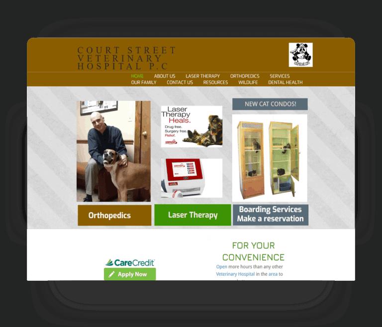 court street vet website before redesign