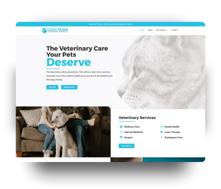 court street vet website after redesign