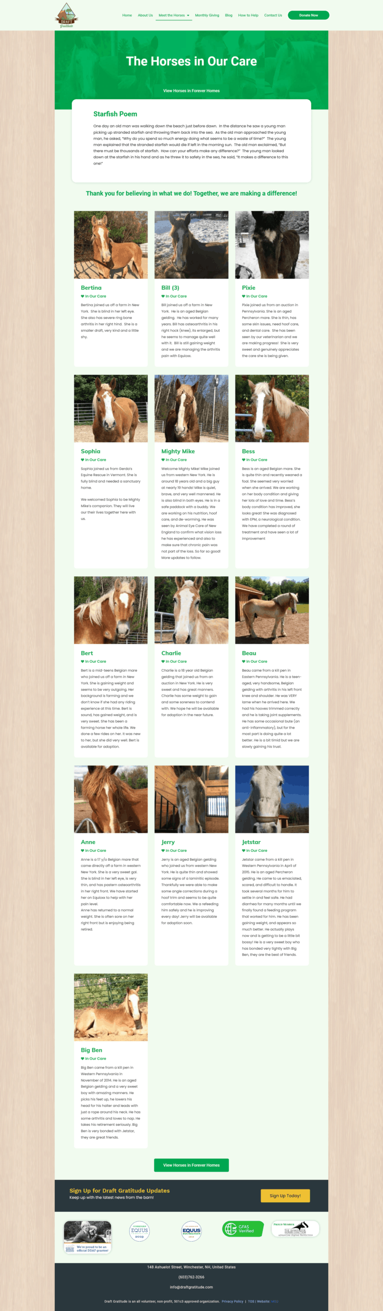 horses in our care page