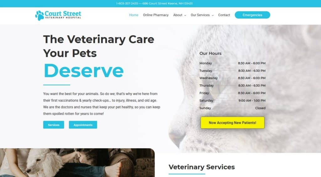 court st vet home page design hero section